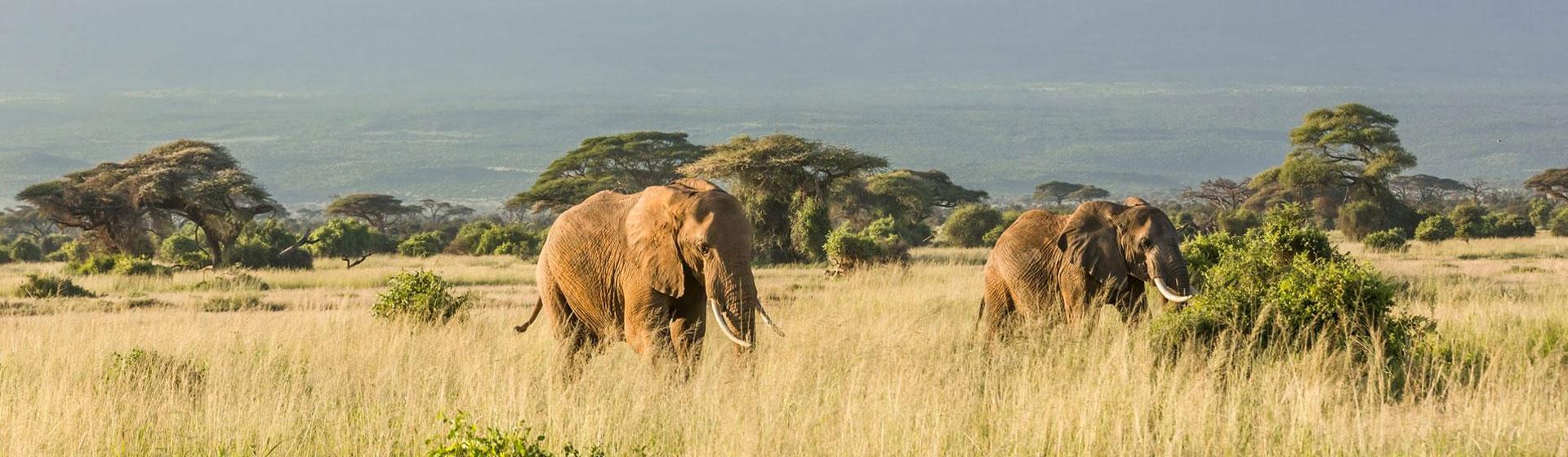 East Africa Destinations